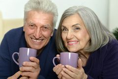 Portrait of an aged couple Royalty Free Stock Photos