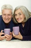 Portrait of an aged couple Royalty Free Stock Images