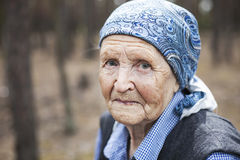 Portrait of an aged woman Royalty Free Stock Photos