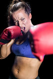 Portrait of aggressive female boxer with fighting stance. Against black background royalty free stock images