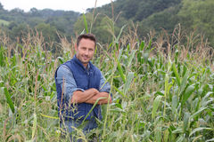 Portrait of agronomist Royalty Free Stock Photos
