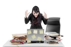 Angry businesswoman with laptop on studio Stock Images