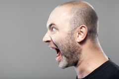 Portrait of angry man screaming isolated on gray Royalty Free Stock Photo