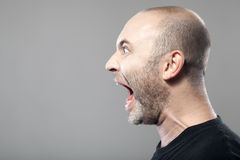 Portrait of angry man screaming isolated on gray background Stock Images