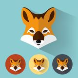 Portrait animal/Fox Illustration Stock