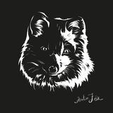 Portrait of arctic fox in one color stock illustration