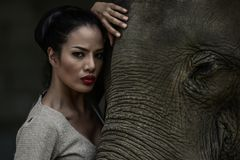 Portrait art of beautiful women and elephants. Portrait art of beautiful woman and elephants in nature Stock Photo