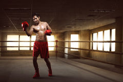 Portrait of asian boxer performing uppercut on the boxing ring stock image