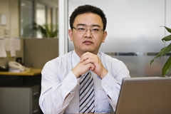 Portrait of asian business executive. Asian business executive working in office Stock Image