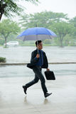 Asian Businessman Running Late. Portrait of Asian businessman running in rainy street holding  umbrella hurrying to work Royalty Free Stock Photography