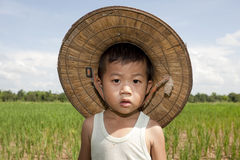 Portrait Asian child in the paddy field Stock Photography