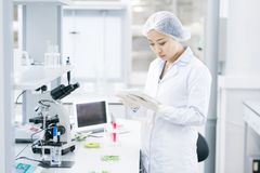 Asian Female Scientist in Laboratory. Portrait of Asian female scientist using digital tablet while doing research in medical laboratory, copy space royalty free stock photography