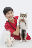 Portrait of an Asian female veterinarian holding cat against gray background Royalty Free Stock Image