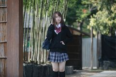 Portrait Asian japanese school girl costume in bamboo japanese garden. In close up stock image