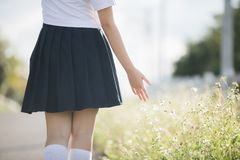 Portrait of asian japanese school girl costume hand walking with small white flower royalty free stock image