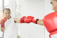 Portrait of Asian senior fighter man punching with red boxing gl. Oves. Boxing practicing Royalty Free Stock Photo