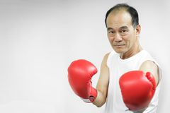Portrait of Asian senior fighter man with red boxing gloves. On white background Royalty Free Stock Image
