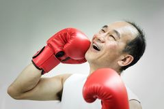 Portrait of Asian senior man punching his face. With red boxing gloves on white background. Failure, Mistake, bankrupt, Losing concepts Royalty Free Stock Image