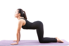 Portrait of asian woman wearing black body suit sitting in yoga Royalty Free Stock Photography