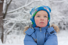 Portrait of asmall boy, winter Stock Images
