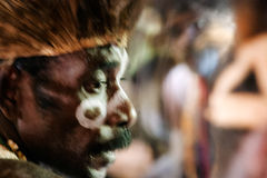 Portrait of the Asmat man Stock Photography