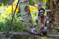 Portrait of the Asmat man Stock Image