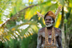 Portrait of the Asmat man Royalty Free Stock Images