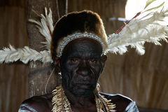 Portrait of the Asmat oldman Royalty Free Stock Photos
