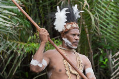 Portrait of the Asmat warrior Stock Image