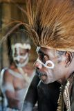 Portrait of the Asmat warrior Royalty Free Stock Image