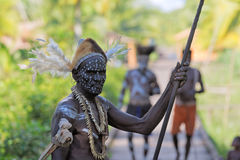 Portrait of the Asmat warrior Stock Photography