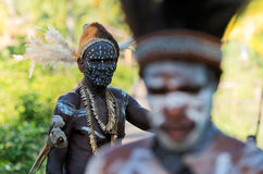 Portrait of the Asmat warrior Royalty Free Stock Photo