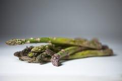 Portrait of Asparagus Stock Images