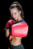 Portrait of athlete with fighting stance. Against black background stock image