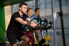 Portrait of athletes at gym Stock Photography