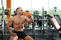 Portrait of athletic man drinking protein shake. In gym royalty free stock images