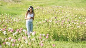 Brunette girl play social media in park. Portrait of attractive Asian woman listen online music and chat on smartphone at pink flowers garden in morning. Outdoor royalty free stock image