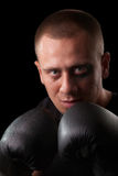 Portrait of attractive boxer. In the dark Stock Images