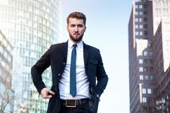 Portrait of an attractive business man with a beard stock photography