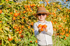 Portrait of attractive cute young boy holding Royalty Free Stock Photo