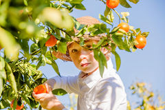 Portrait of attractive cute young boy picking Stock Images
