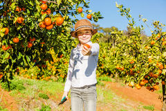 Portrait of attractive cute young boy picking Stock Photos