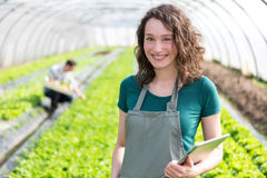 Portrait of an attractive farmer in a greenhouse using tablet Royalty Free Stock Images