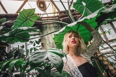 Young Caucasian female model surrounded with exotic flora. Portrait of an attractive female model standing under the giant exotic leaf holding it with one hand Royalty Free Stock Photography