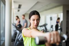 Portrait of attractive fit woman in gym stock photo