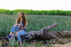 Portrait of an attractive girl in a pineapple field at sunset Royalty Free Stock Photography