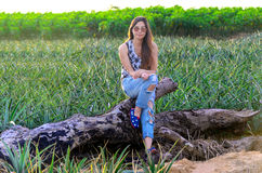 Portrait of an attractive girl in a pineapple field at sunset Royalty Free Stock Images
