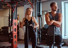 Portrait of an attractive sportive couple posing while leaning on barbells, looking away in a fitness club or gym. Portrait of an attractive sportive couple royalty free stock photography