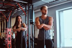Portrait of an attractive sportive couple posing while leaning on barbells, looking away in a fitness club or gym. Portrait of an attractive sportive couple royalty free stock photos