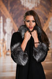 Portrait of attractive stylish brunette woman in fur coat Royalty Free Stock Images